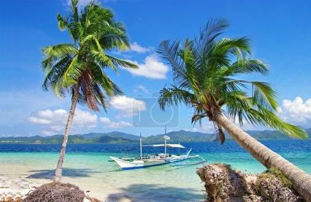 Tropical holidays