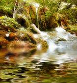 automne chute d'eau