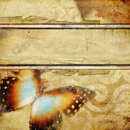 Photo pour Résumé dans un style rétro avec papillon et place pour le texte - image libre de droit