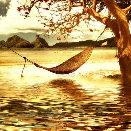 Photo pour Scène tropicale - image libre de droit