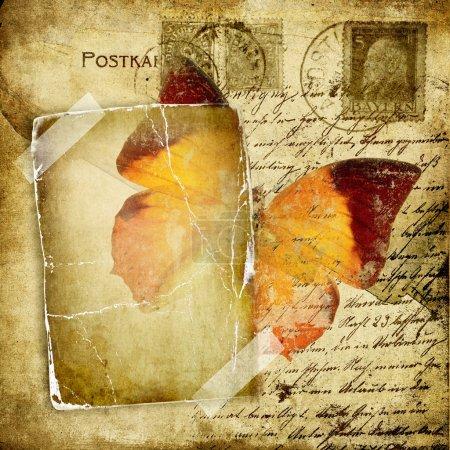 Photo pour Carte vintage avec papillon - image libre de droit