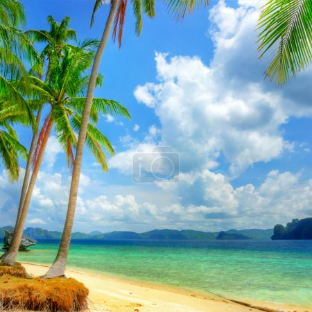 Photo for Tropical beach background - Royalty Free Image