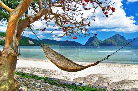 Photo pour Détente tropicale - image libre de droit