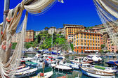 Colorful Camogli, Ligurian coast