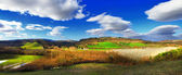 Pictorial Toscana. Beautiful rural landscape, San Gimigniono on