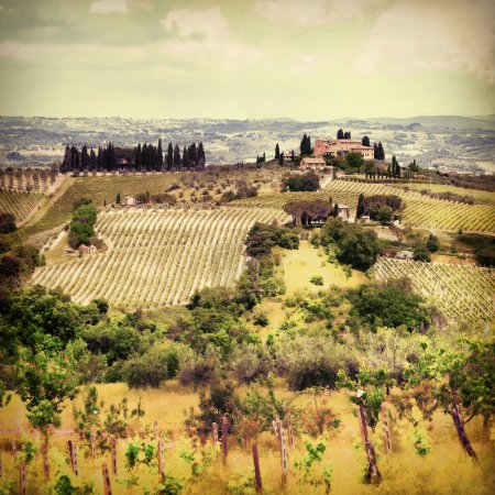 landscapes of Tuscany, artistic retro toned picture