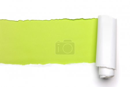 Photo for Torn Paper showing green background isolated on a white background - Royalty Free Image