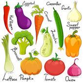 Funny vegetable cartoon isolated