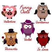 Funny owls set for your design