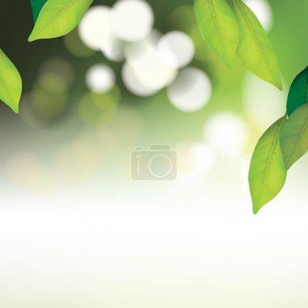 Vector Beautiful Spa Background with Leafs...