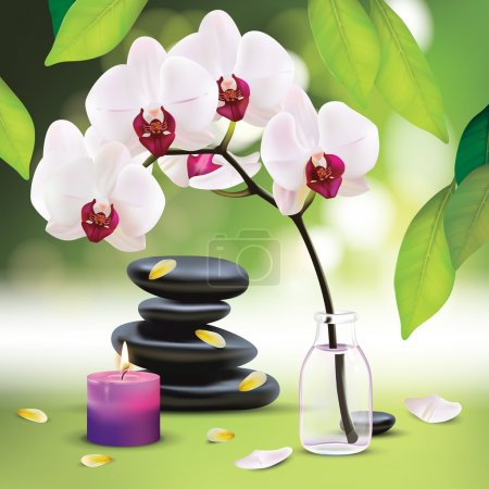 Illustration for Vector Beautiful Spa Composition With Zen Stones - Royalty Free Image