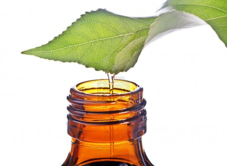 Photo for Bottle with homeopathy balm and leaf - Royalty Free Image