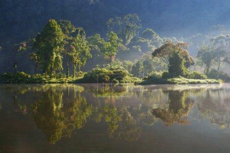 Foto de Reflejo en el lago situgunung - Imagen libre de derechos