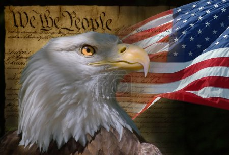 Photo for US Flag, Bald Eagle and Constitution montage - Royalty Free Image
