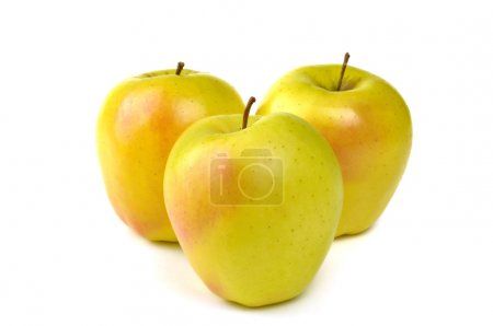 Photo for Golden apple typical of Trentino Alto Adige, Italy - Royalty Free Image