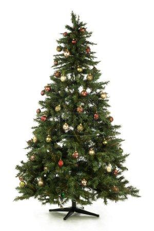 Full length christmas tree