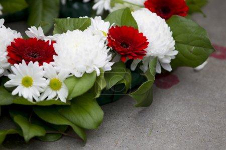 Photo pour Gros plan tiré de fleurs rouges et blanches, disposées au Mémorial de guerre. - image libre de droit