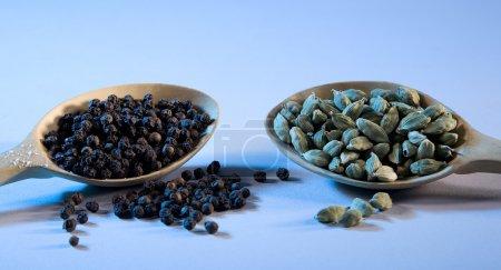 Photo pour Cuillères avec poivre noir et cardamome - image libre de droit