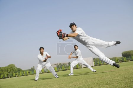 Cricketers fielding