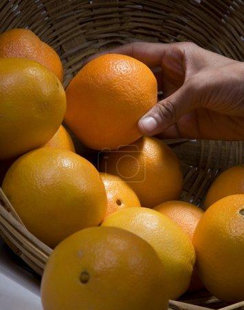 Photo pour Oranges dans un panier - image libre de droit