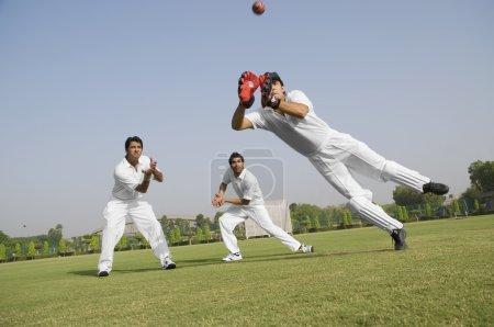 Cricketers fielding