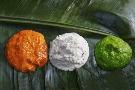 Photo pour Chutney de couleur différente, symbolisant le drapeau indien - image libre de droit