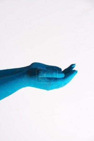 Photo pour Gros plan de mains couleurs bleus pendant le festival de Holi sur fond blanc - image libre de droit