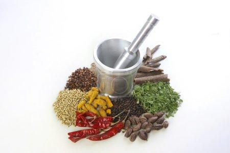 Photo pour Différents types d'épices avec du mortier et pilon sur fond blanc - image libre de droit