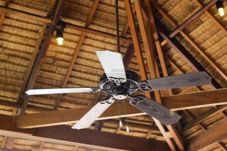Vintage fan on wood ceiling