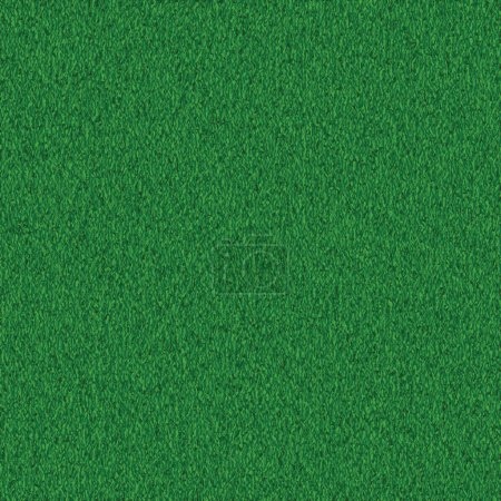 Green grass background texture. Lawn pattern