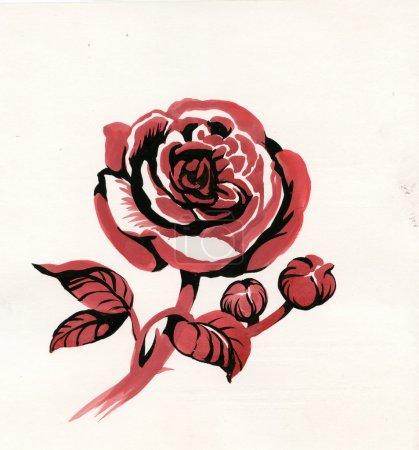 Photo pour Dessinée à la main rouge a augmenté dans les croquis de style, isolé sur fond blanc - image libre de droit