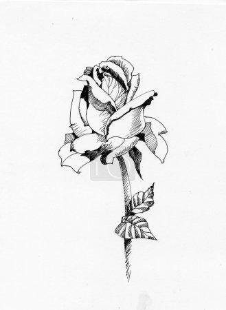 Photo pour Dessinée à la main est passée dans les croquis de style, isolé sur fond blanc - image libre de droit