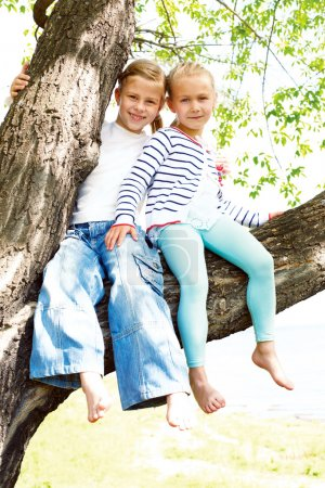 Two blonde little girl sitting on a tree