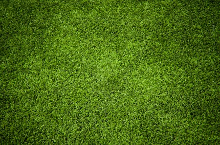 Photo for Background of A Green Grass Texture - Royalty Free Image
