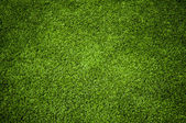 Grass textury