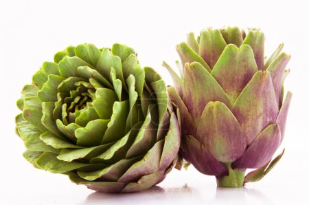 Two Artichoke Fruits