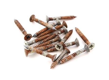 Rusty wood screws