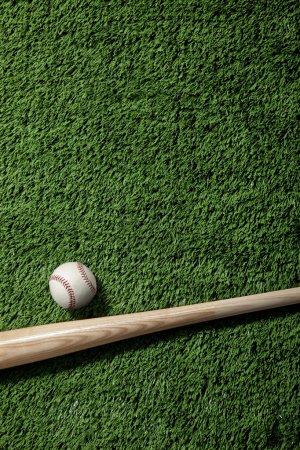 Overhead view of baseball and bat on green turf