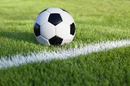 Photo for A traditional soccer ball sits on a grass field with white stripe - Royalty Free Image