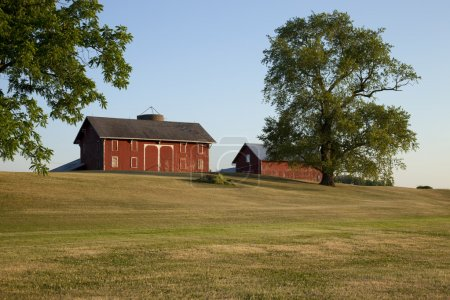 Old red barns in Ohio