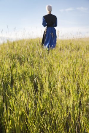 Defocused Amish woman walking in a field