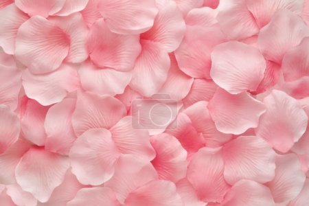 Photo for Backgorund texture of beautiful delicate pink rose petals in a random pile - Royalty Free Image