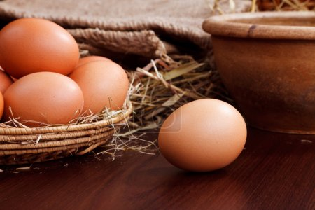Photo for Nature chicken eggs in nest - Royalty Free Image
