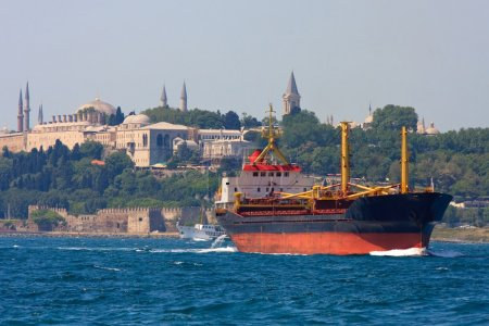Freighter before Topkapi Palace skyline