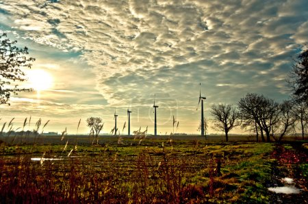 Windmills in the backlight