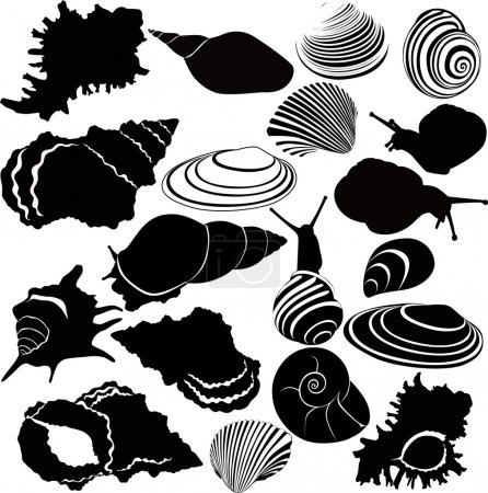 Illustration for Variety of snails - Royalty Free Image