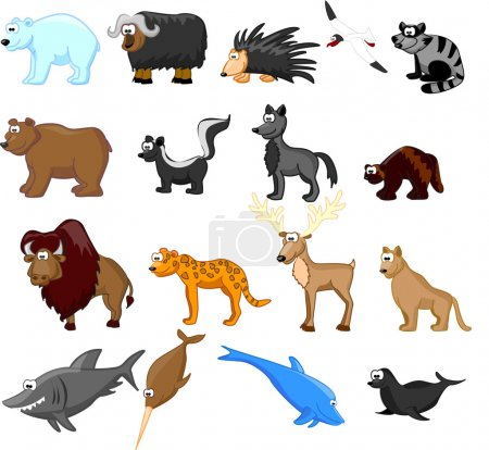 Illustration for Animals of North America, including grizzly bears, caribou, polar bears, raccoons, bison, porcupine, mountain lion, coyote, skunk, wolverine, seals, jaguar, dolphin, shark, bowhead whale - Royalty Free Image