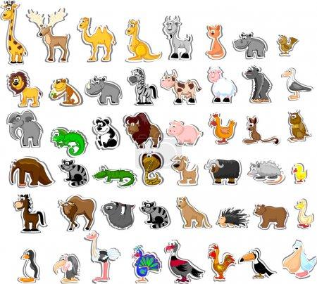 Photo pour Grand ensemble d'animaux - image libre de droit