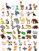 Extra large set of animals including lion kangaroo giraffe elephant camel antelope hippo tiger zebra rhinoceros