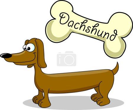 Cartoon dog breed dachshund